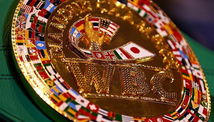 Украинская делегация не посетит конгресс WBC в Санкт-Петербурге